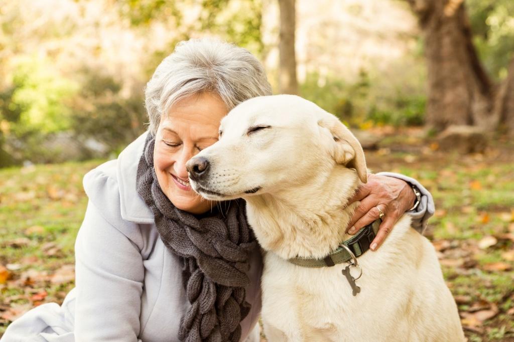 человек и собака фото картинки планах